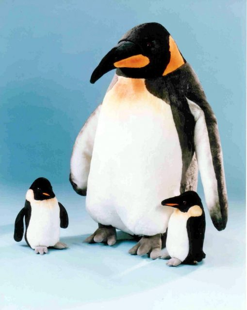 pinguin-1